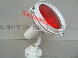 飞利浦水底灯红色 景观灯 PRA38 80W 厚玻璃射灯 泳池喷泉灯