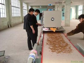黄粉虫微波烘干机 小型黄粉虫干燥杀菌设备 专业厂家定做食品烘干杀菌设备 价格
