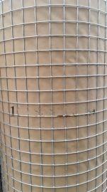 养鸡专用铁丝网厂15年专注生产养鸡围网