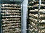 姬松茸烘干机_巴西蘑菇烘干机_烘干机厂家
