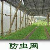 大棚防虫网