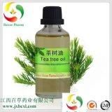 澳洲品質 茶樹精油 廠家生產單方精油白千層油