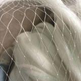 果树防鸟网乙烯锦纶材质1-5cm孔径