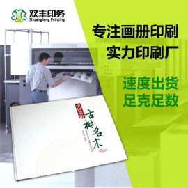 三门峡画册印刷 宣传画册定制 公司宣传手册设计