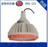 供應新黎明BZD118防爆低碳免維護LED照明燈 廠家直銷