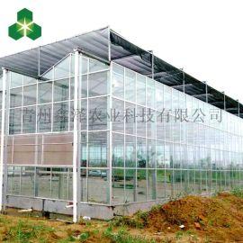 鑫泽 WS-PCK0091 文洛玻璃温室 玻璃温室生产厂家
