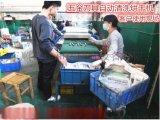广东五金工具清洗机 平面刀具刃具自动清洗烘干机 锯片清洗机