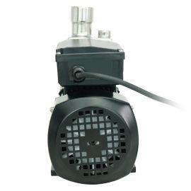 厂家直销 304不锈钢自吸离心泵 上海泳池循环水泵 单相卧式抽水机