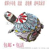 网红小彩龟 地摊七彩观赏龟 卡通图案巴西龟活体批发