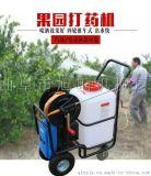 养殖电动消毒机60L充电式手推式农药喷洒机
