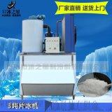 深圳冰之星3噸果蔬海鮮保鮮冷藏商用小型片冰機