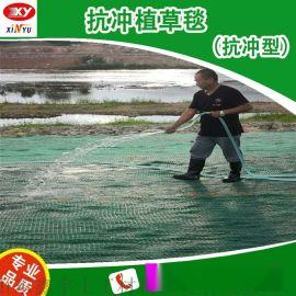边坡生态植草毯 生态保护毯 抗冲刷型生态毯