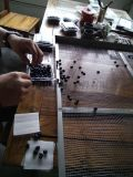 藍莓乾燥設備專門的果蔬烘乾機廠家