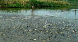 水产养殖杀菌剂|渔业消毒剂|水产杀菌剂