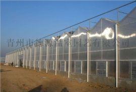 阳光板温室 智能温室大棚 温室工程厂家