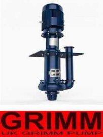 进口液下渣浆泵(欧美进口品牌)
