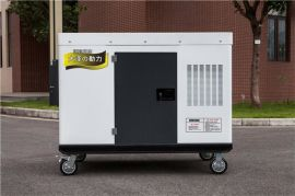 大泽动力 25千瓦电启动柴油发电机组