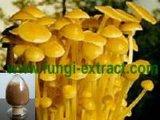 金針菇多糖
