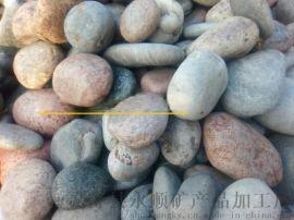 新乡天然鹅卵石   永顺变压器鹅卵石**