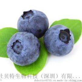 厂家直销 蓝莓味食品香精 清新香甜蓝莓香气 健康香精 FDB1037