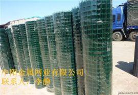 中阳公司 荷兰网 养殖铁丝网 道路围栏网 防护网