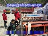 隧道鋼筋網排焊機—德信智遠生產廠家