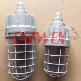 BAD61-L100hZ一體式防爆立杆燈 BAD61防爆燈