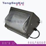 LED户外壁灯100W防水壁灯