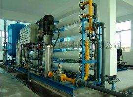 上海大河人家双级反渗透设备,大型水处理设备