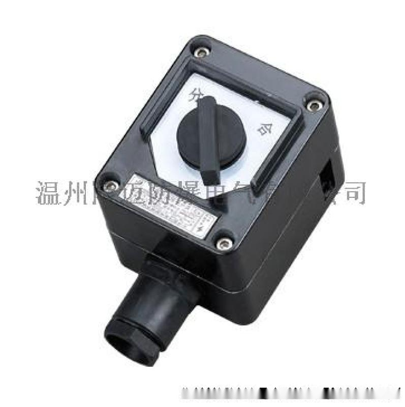 BZM8050 雙極全塑防爆防腐照明開關