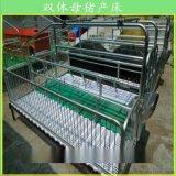 优质双体母猪产床,现代复合猪用产床