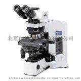 金相顯微鏡BX51M