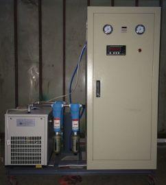 中恒制氮保鲜防腐制氮机小型制氮机5立方Nm3/h  纯度99.9