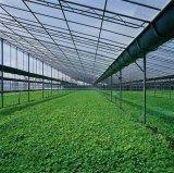 溫室大棚專用鋁型材開模設計 訂做鋁合金溫室大棚 蔬菜大棚