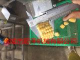 厂家热销东北甜玉米切割机 水果玉米切块机