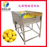 柠檬清洗机 毛刷喷淋清洗机