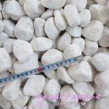 供应白鹅卵石 汉白玉鹅卵石2-3cm 雪花白鹅卵石