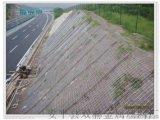 柔性边坡防护网 SNS边坡防护网厂家直销公路铁路被动边坡防护网