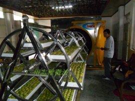 广州志雅罗汉果微波真空干燥设备(ZY-30HM)