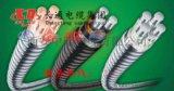 鋁合金電纜YJHLV22  4×25+1×16mm
