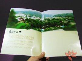企业宣传册产品图册宣传彩页设计印刷