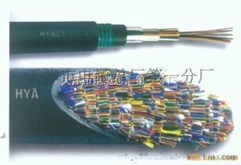 HYA200x2x0.5大对数电缆