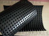 山東排水板的廠家 塑料排水板價格