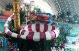 水上乐园设备巨兽碗滑梯
