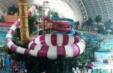 水上樂園設備巨獸碗滑梯