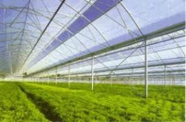 TWS-WS日光温室大棚环境自动测试系统 厂家直销