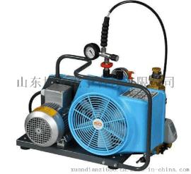 JUNIOR II-E化工厂  高压空气压缩机、充气泵