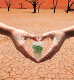 LUCK 農林抗旱保水劑