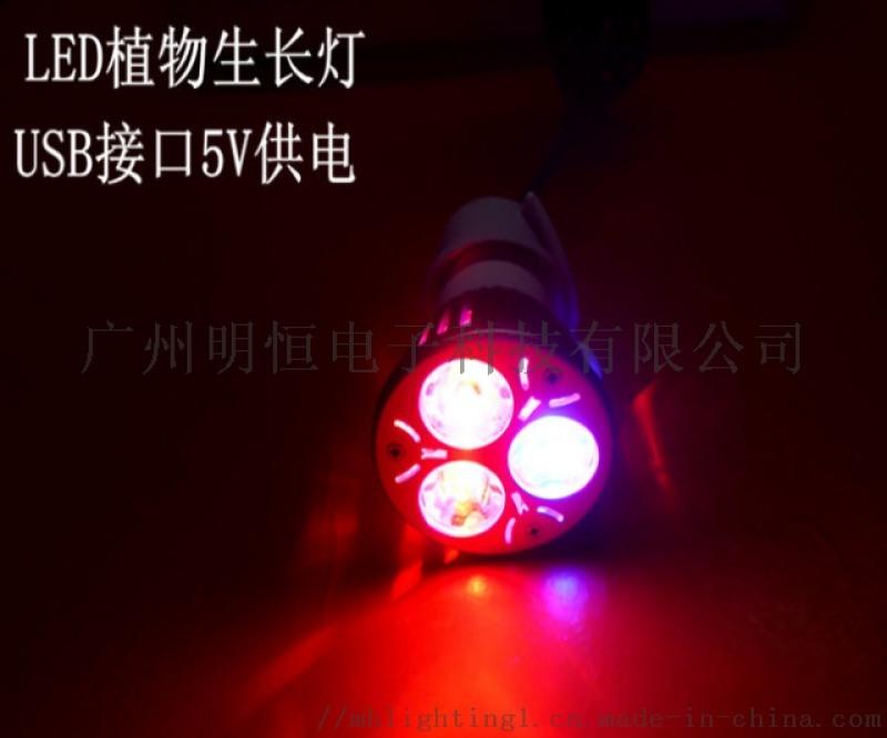 LED植物生长灯,USB室内植物补光灯,植物助长灯