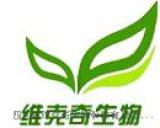 潘糖 33401-87-5 高纯直供 中药对照品/标准品